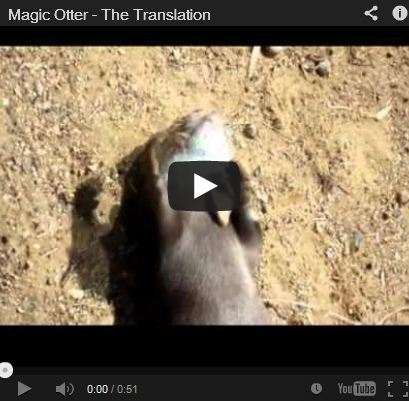 The Otter Magician