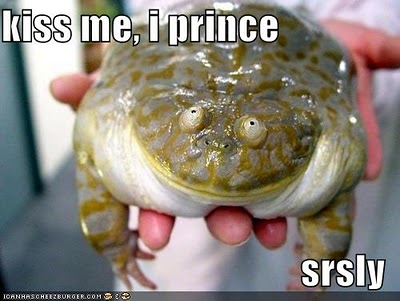 Smooch. Kiss. With a Budgett's Frog?