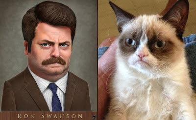 Grumpy Cat, Grumpy Cat, Why Are You So Grumpyyy?