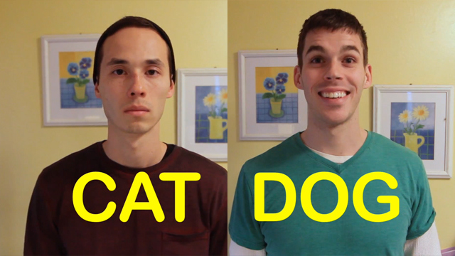 What It Would Be Like to Have a Cat-Friend vs a Dog-Friend