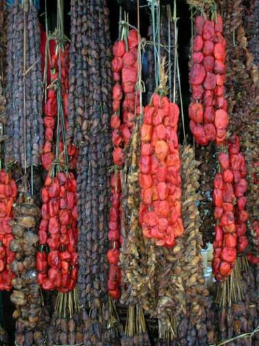 blood rock, Pyura chilensis (4)