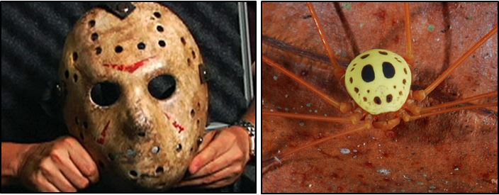jason's mask harvestman, halloween costume ideas