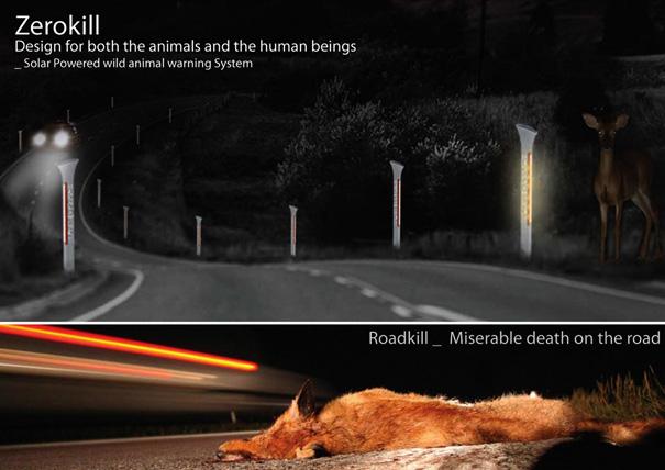 zerokill, prevent roadkill