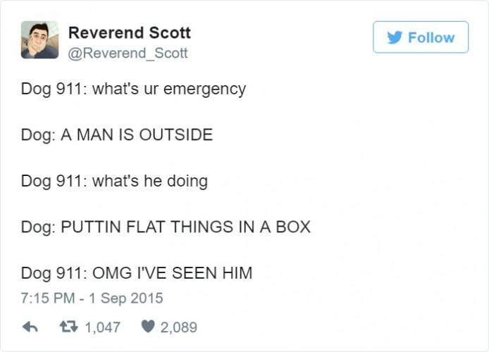 funny-dog-emergency-calls-reverend-scott-10-5760ff1d22ea2__700